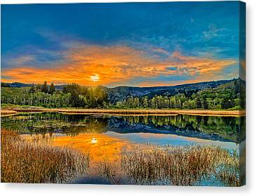 Dry Lagoon Spring Morning Canvas Print