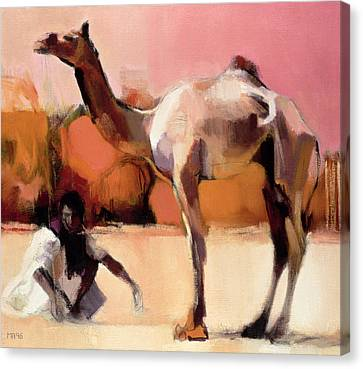 Camel Canvas Print - dsu and Said - Rann of Kutch  by Mark Adlington