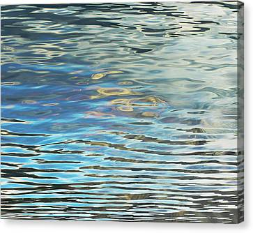 Dual Reflections Canvas Print by Susie Gillatt