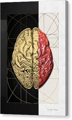 Dualities - Half-gold Human Brain On Black And White Canvas Canvas Print by Serge Averbukh