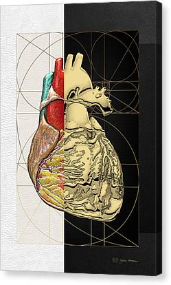 Dualities - Half-gold Human Heart On Black And White Canvas Canvas Print by Serge Averbukh