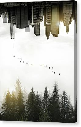Canvas Print featuring the photograph Duality by Nicklas Gustafsson