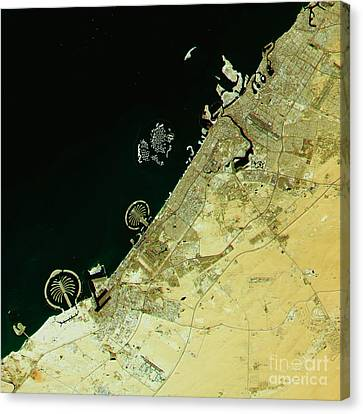 Middle East Canvas Print - Dubai Topographic Map Natural Color Top View by Frank Ramspott