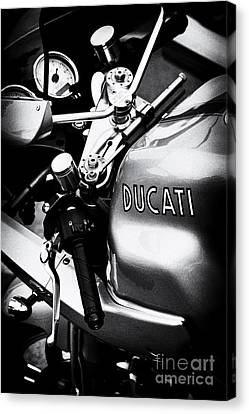 Ducati Ps1000le Motorcycle  Canvas Print by Tim Gainey