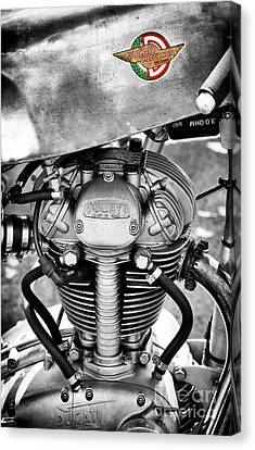 Ducati Single Monochrome  Canvas Print by Tim Gainey