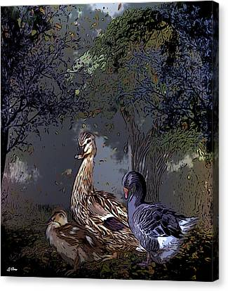 Duck Duck Goose 002 Canvas Print by G Berry