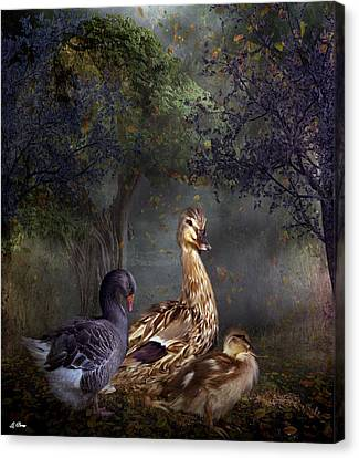 Duck Duck Goose Canvas Print by G Berry