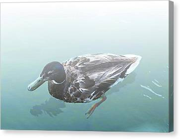 Canvas Print featuring the digital art Duck In The Mist by Ellen Barron O'Reilly