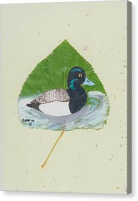 Duck On Pond #2 Canvas Print