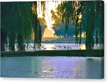 Duck Pond At Dawn Canvas Print by Bill Cannon