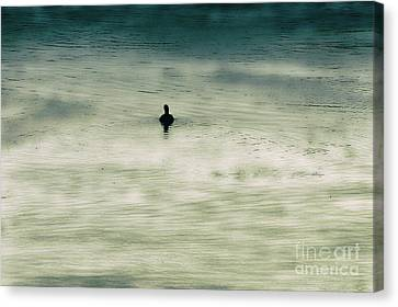 Canvas Print - Duck Silhouette by Kim Pate