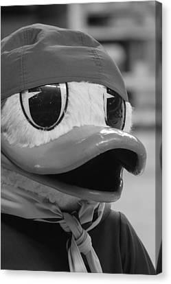 Ducking Around Canvas Print by Laddie Halupa