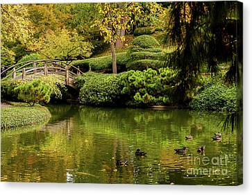 Canvas Print featuring the photograph Ducks In Summertime by Iris Greenwell