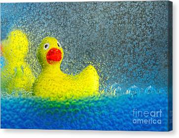 Ducks In The Tub By Kaye Menner Canvas Print by Kaye Menner