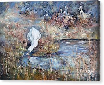 Ducks. Split Opposite Colour Harmony.  Canvas Print