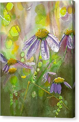 Due Today Z - Dew To Daisy Canvas Print by Lynn Babineau