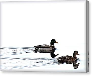 Duet Canvas Print by Debi Dmytryshyn
