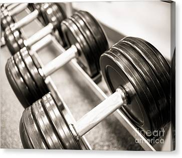Dumbbell Weights On A Rack Canvas Print by Paul Velgos