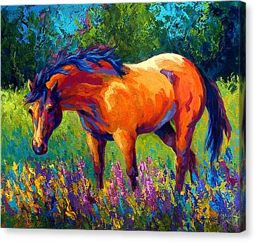 Rodeo Canvas Print - Dun Mare by Marion Rose