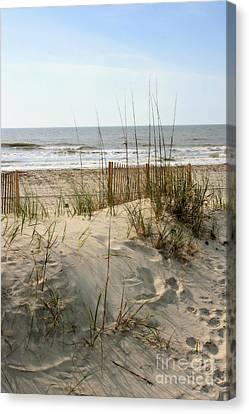 Dune Canvas Print by Angela Rath