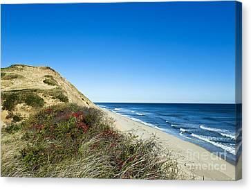 Dune Cliffs And Beach Canvas Print by John Greim