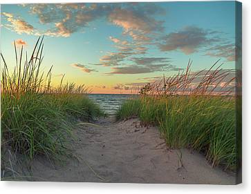 Indiana Landscapes Canvas Print - Dune Path At Sunset by Jackie Novak
