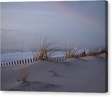 Dune View 2 Canvas Print by  Newwwman