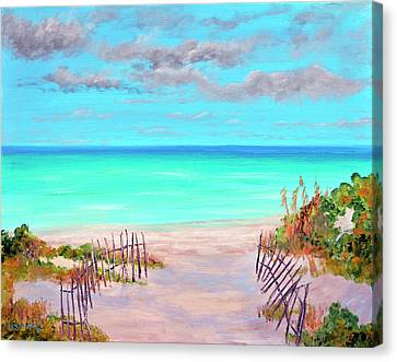 Dunes Beach 2 Canvas Print