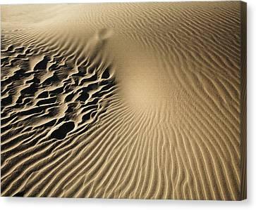 Dunes Footprints Canvas Print
