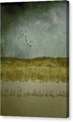 Dunes Canvas Print by Joana Kruse