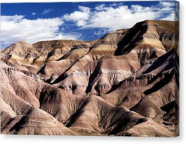 Dunes Of Arizona Canvas Print