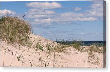Dunes Of White Horse Beach Canvas Print by Janice Drew