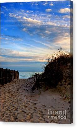Dunes On The Cape Canvas Print by Joann Vitali