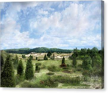 Dunescape Preserved Forever Canvas Print by Kathi Mirto