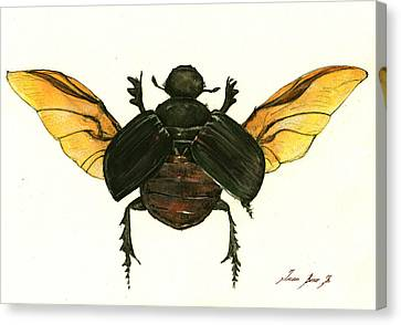 Beetle Canvas Print - Dung Beetle by Juan Bosco