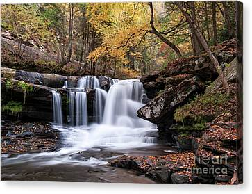 Canvas Print featuring the photograph Dunloup Falls - D009961 by Daniel Dempster