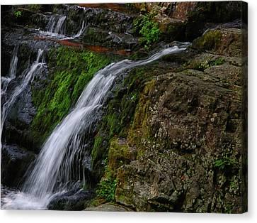 Canvas Print - Dunnfield Creek Falls 2 by Raymond Salani III