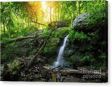 Dunnfield Creek Sunrise  Canvas Print by Michael Ver Sprill