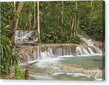 Dunn's River Falls - Another View Canvas Print by Charles Kozierok