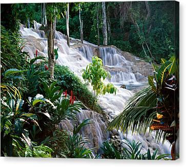 Dunn's River Falls Jamaica Canvas Print
