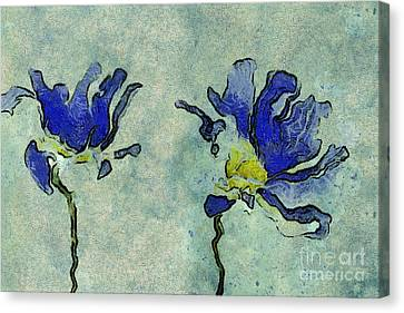 Duo Daisies - 02dp3b22 Canvas Print by Variance Collections