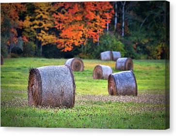 Durham Autumn Harvest Canvas Print