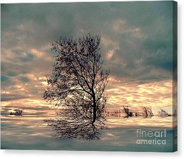 Canvas Print featuring the photograph Dusk by Elfriede Fulda