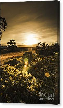 Dusk In Rural Australia Canvas Print by Jorgo Photography - Wall Art Gallery
