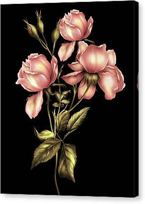 Peaches Canvas Print - Dusky Peach Roses On Black by Georgiana Romanovna