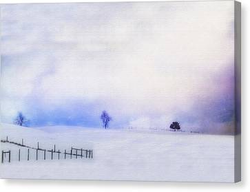 Dusky Snow Canvas Print by Kathy Jennings