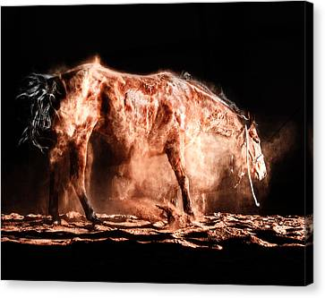 Sean Horse Canvas Print - Dust Dance by Sean Halverson