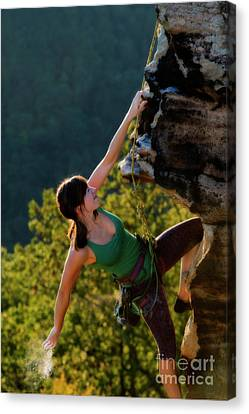Dusting The Hand For Climbing Canvas Print by Dan Friend