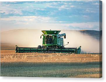 Dusty Deere Canvas Print by Todd Klassy