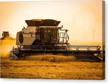 Dusty Harvest Canvas Print